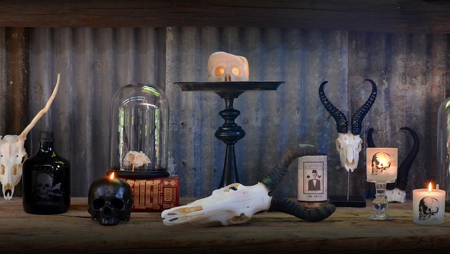 blog-skull-2